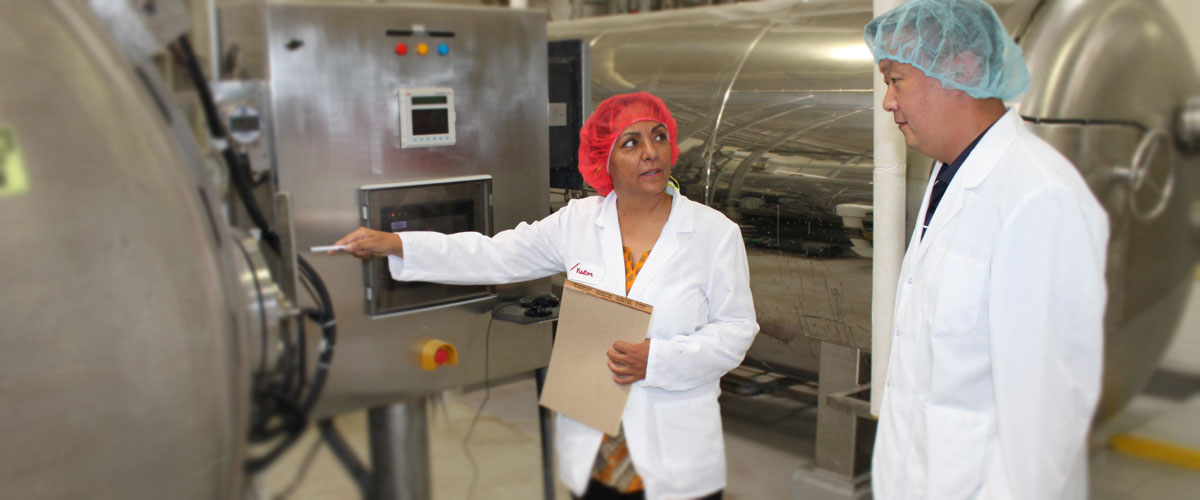 Auditor inspecting food processing factory