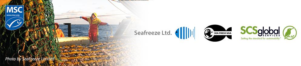 Seafresh Squid