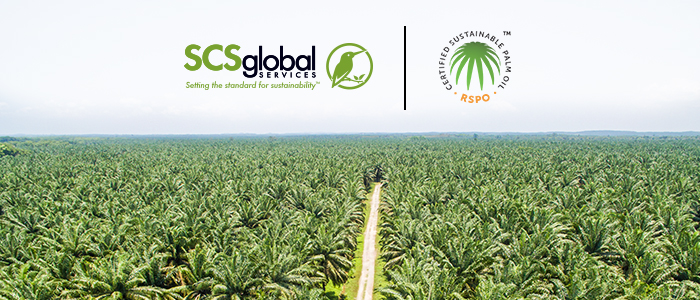 Roundtable on Sustainable Palm Oil (RSPO)
