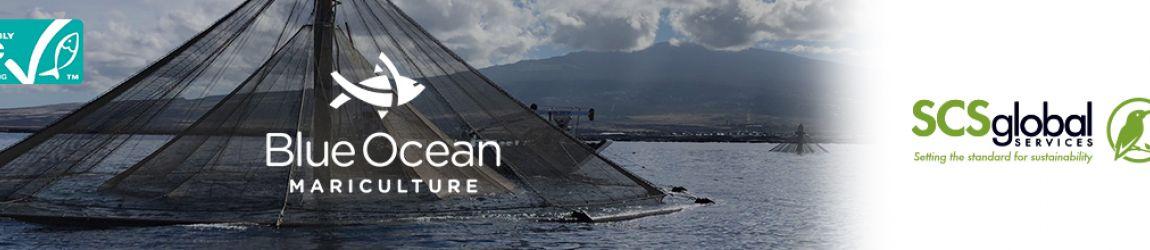 Blue Ocean Mariculture
