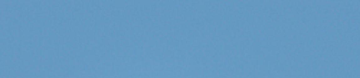 flying kingfisher bird