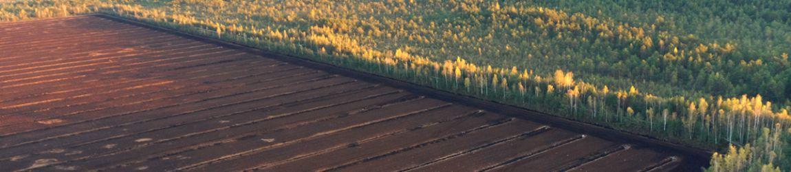 responsibly managed peatland