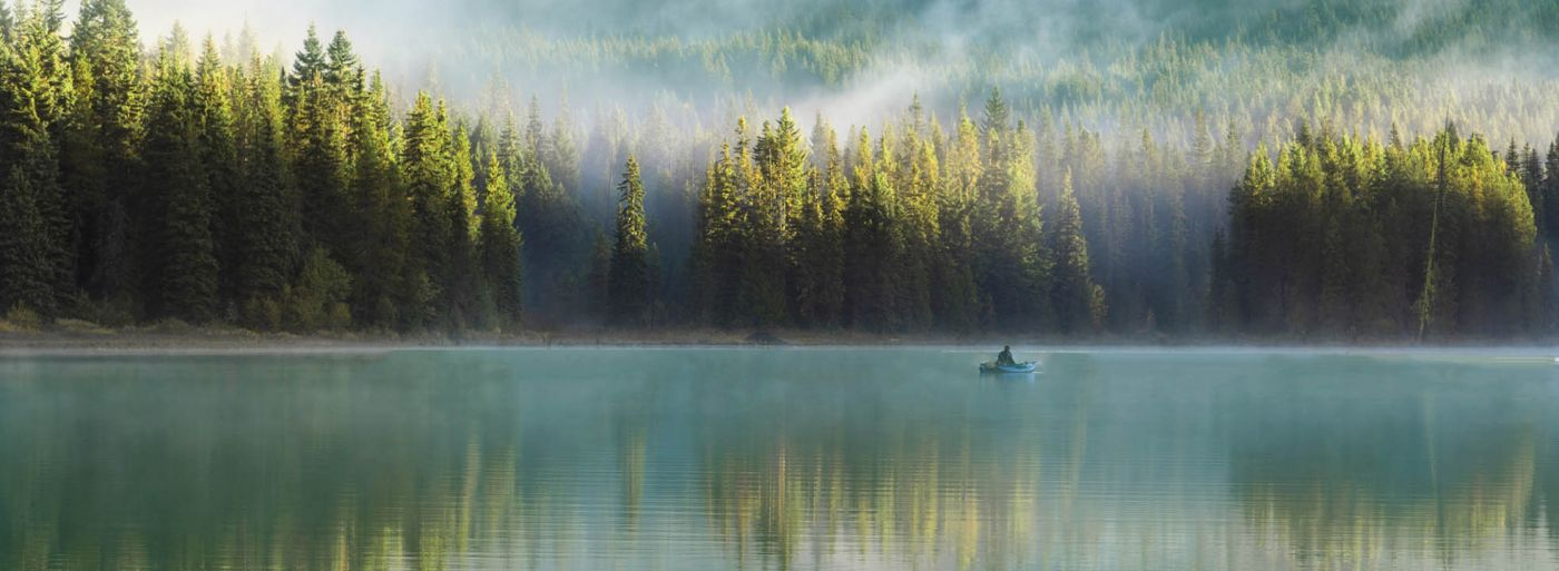 fisherman forest