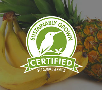 Sustainably Grown