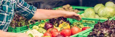 Food Safety Webinar Presentation